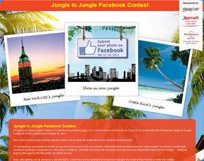 Jungle to Jungle Contest